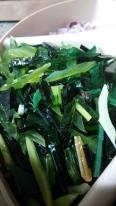 Grass/Stem Glass